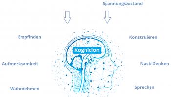 Bild Kognitive Fähigkeiten